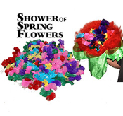 Shower of Spring Flowers w Flowers