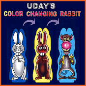 Color Changing Rabbits